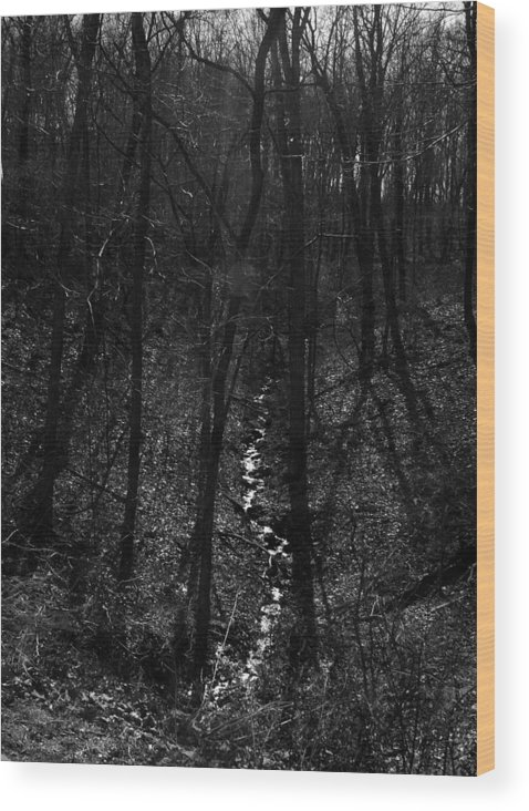 Ansel Adams Wood Print featuring the photograph White Rriver Headwater by Curtis J Neeley Jr