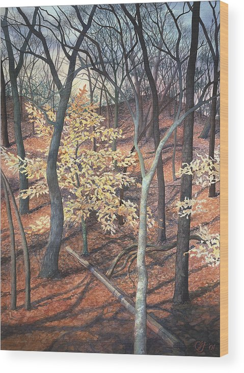 Trees Wood Print featuring the painting Winter Beech by Craig Gallaway