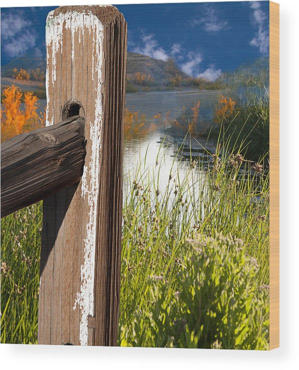 Agriculture Wood Print featuring the photograph Landscape With Fence Pole 2 by Gunter Nezhoda