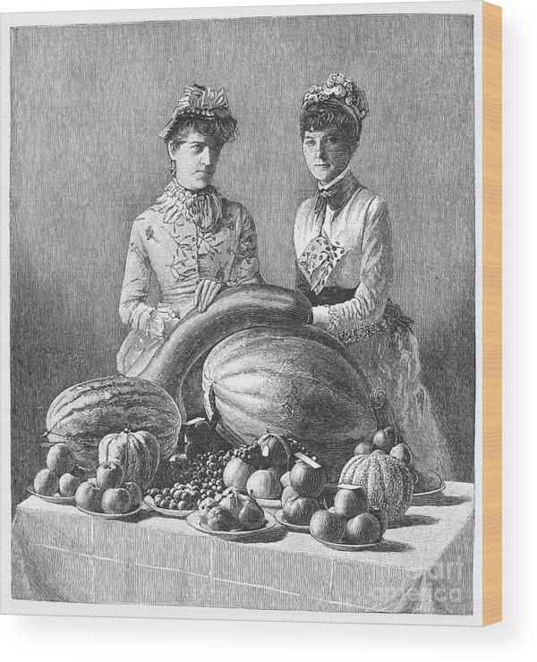 1889 Wood Print featuring the photograph Kentucky: Fair, C1889 by Granger