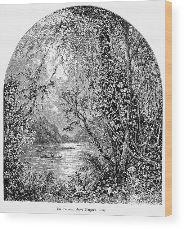 19th Century Wood Print featuring the photograph Potomac River by Granger