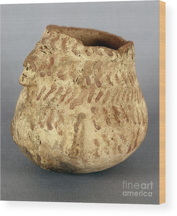 1000 Wood Print featuring the photograph Anasazi Bowl by Granger