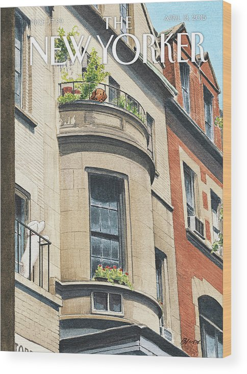 Dog Wood Print featuring the painting Balcony Scene by Harry Bliss