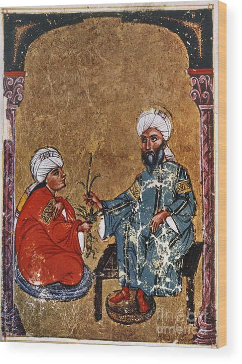 1229 Wood Print featuring the photograph Dioscorides And Student by Granger