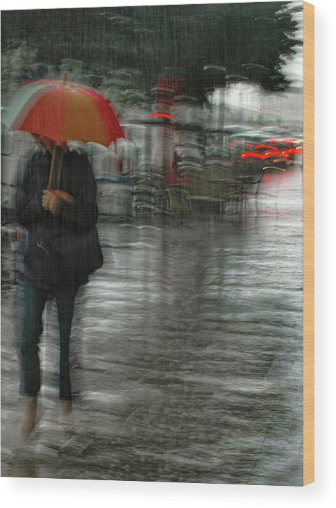 Street Wood Print featuring the photograph It's Raining Cats And Dogs by Yvette Depaepe