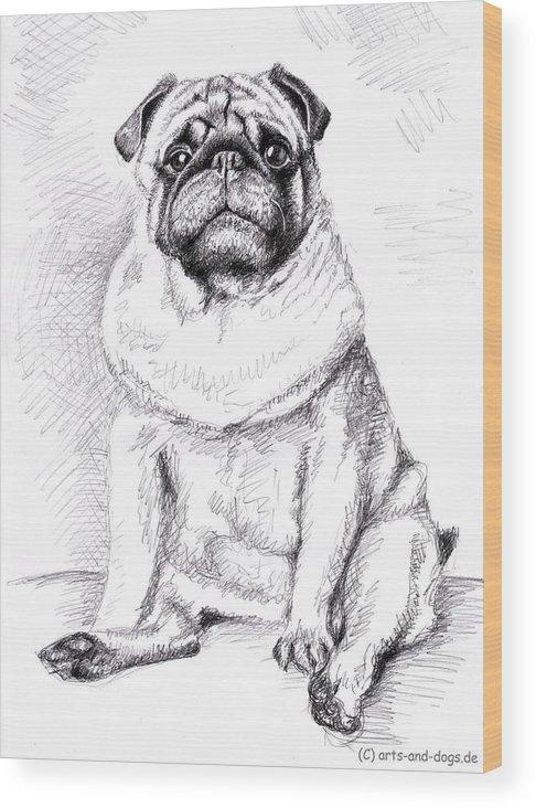 Dog Wood Print featuring the drawing Pug Anton by Nicole Zeug