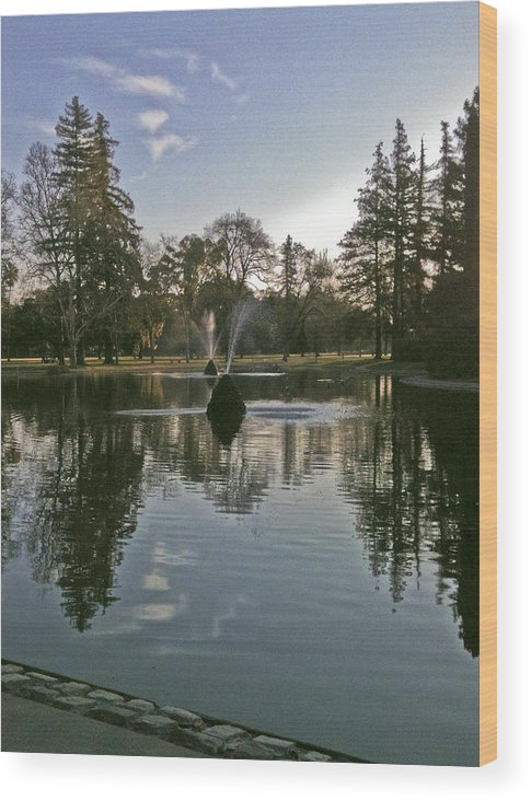 Sky Wood Print featuring the photograph Reflected Clouds by Patrick Cosgrove