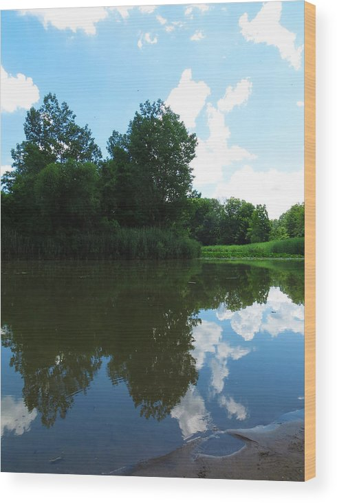 Estuary Wood Print featuring the photograph Seeing Double by Shawna Rowe