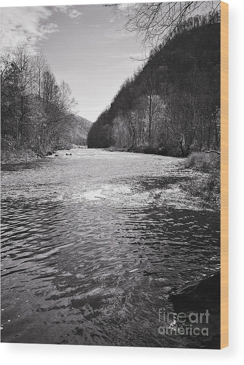 Landscape Wood Print featuring the photograph The Broad River 1 Bw by Earl Johnson