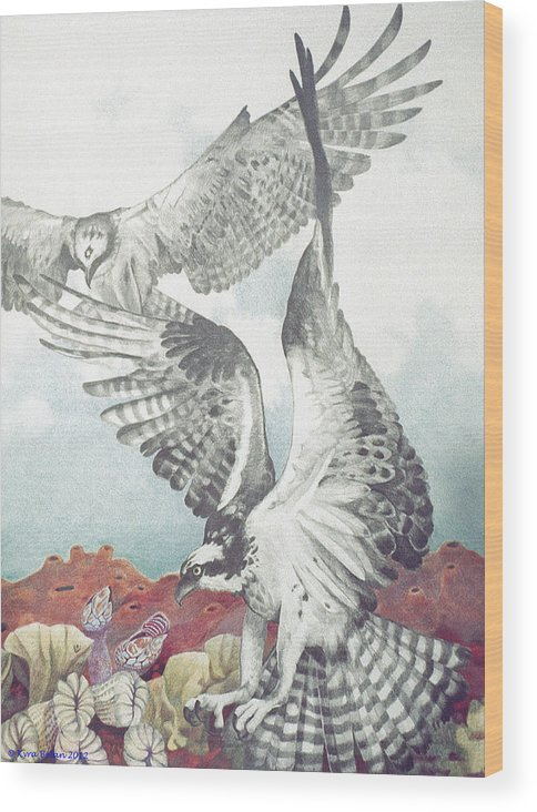 Two Ospreys In Flight Over A Magical Landscape Reminiscent Of Corals And Sponges. This Is Another Example Of My Magic Realism Style. The Sky In The Background Suggests Deep Space. Wood Print featuring the drawing Two Ospreys by Kyra Belan
