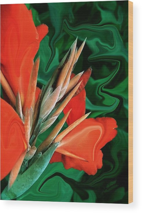 Bird Of Paradise Wood Print featuring the photograph Bird Of Paradise 5 by Jim Darnall