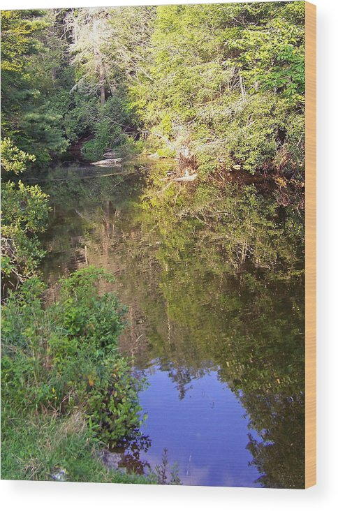 Water Wood Print featuring the photograph Blue Heart Surprise by Patricia Taylor