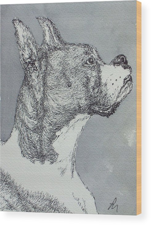 Dog Wood Print featuring the drawing Boxer by Pete Maier