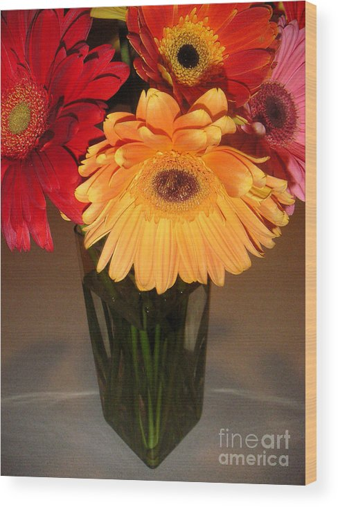 Nature Wood Print featuring the photograph Gerbera Daisies - Vased by Lucyna A M Green