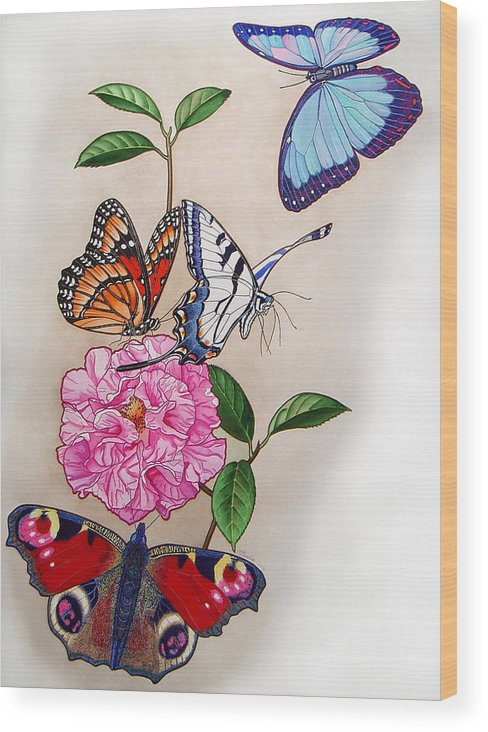 Butterflies Wood Print featuring the painting Ladies Of The Camellia by Vlasta Smola