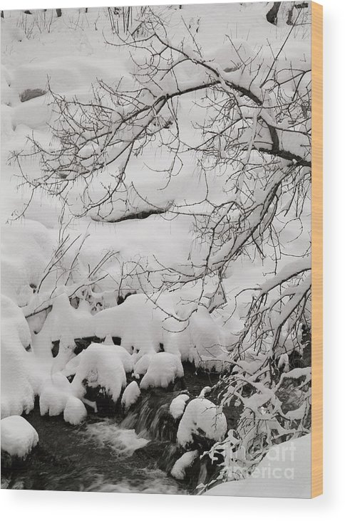Utah Wood Print featuring the photograph Lambs Canyon In Winter by Dennis Hammer