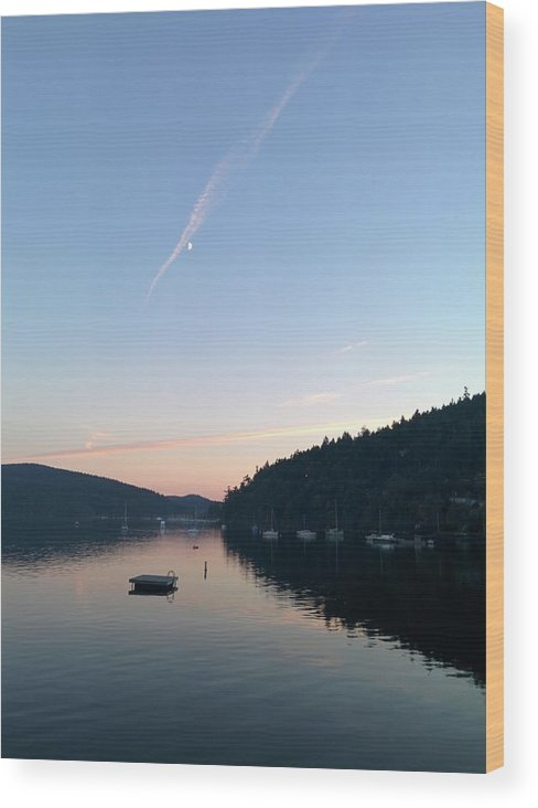 Wood Print featuring the photograph Moon by Maria Verdicchio
