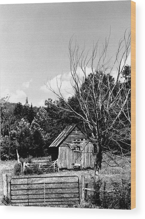Wood Print featuring the photograph Oldshack by Curtis J Neeley Jr