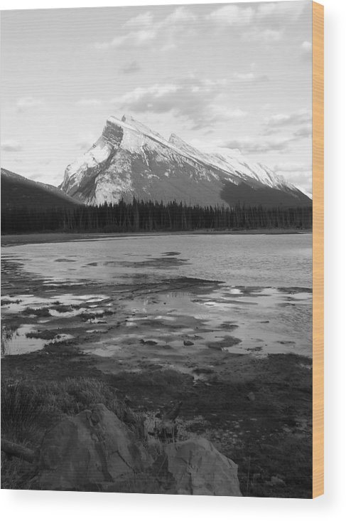 Rocky Mountains Wood Print featuring the photograph Rundell by Tiffany Vest