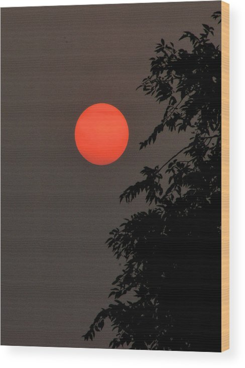 Montana Wood Print featuring the photograph Smoky Sunset by Scott Carlton