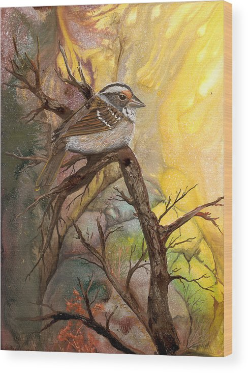 Bird Wood Print featuring the painting Sparrow by Sherry Shipley