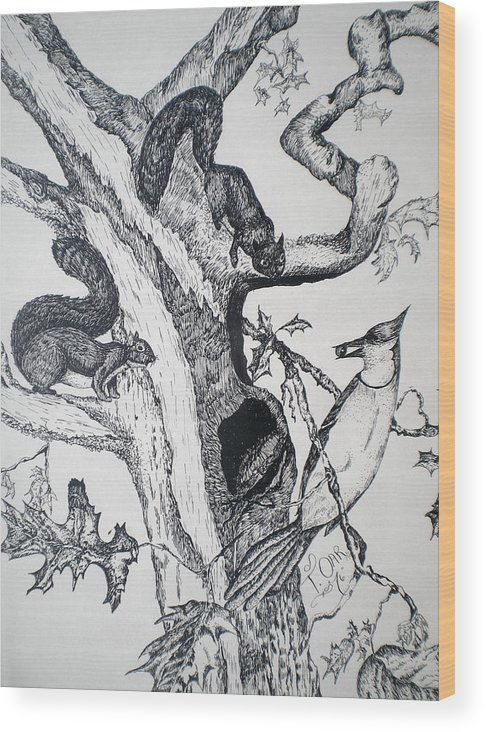 Nature Wood Print featuring the drawing Squirrels And Bird by Tammera Malicki-Wong
