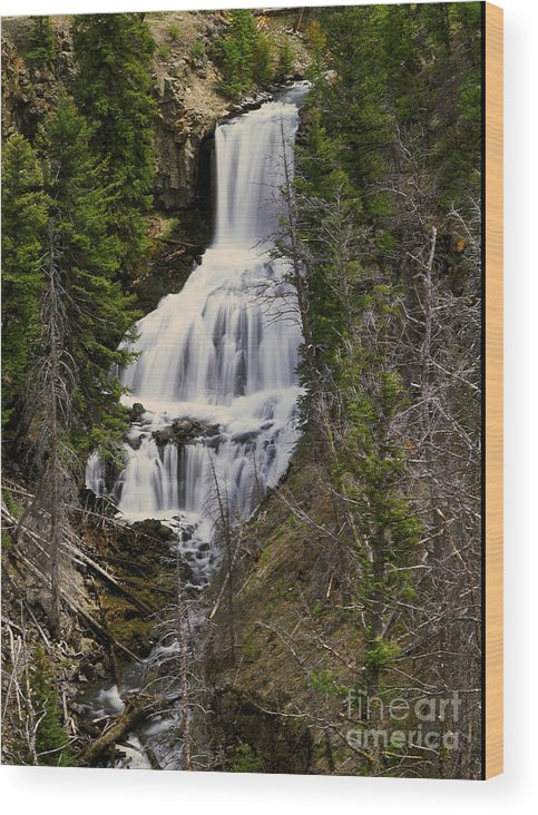 Waterfall Wood Print featuring the photograph Undine Falls On Lava Creek by Dennis Hammer