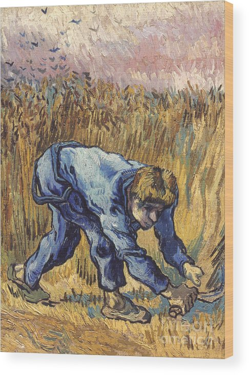 1889 Wood Print featuring the photograph Van Gogh: The Reaper, 1889 by Granger