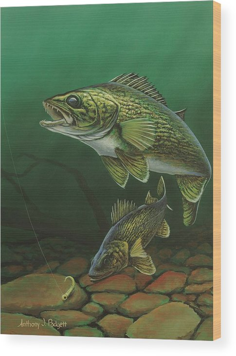 Walleye Wood Print featuring the painting Walleye by Anthony J Padgett