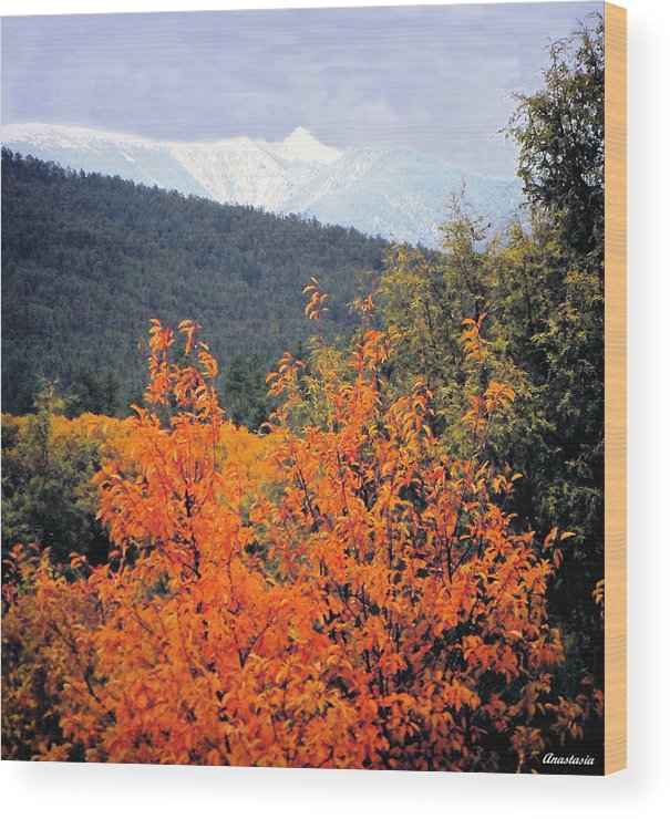 Wood Print featuring the photograph Autumn Glory And Mountain Cathedral by Anastasia Savage Ealy