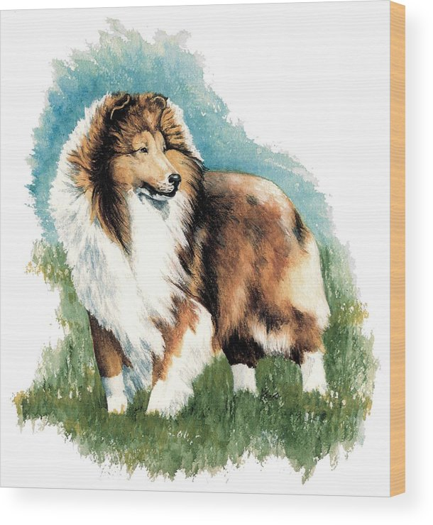 Shetland Sheepdog Wood Print featuring the painting Sheltie Watch by Kathleen Sepulveda