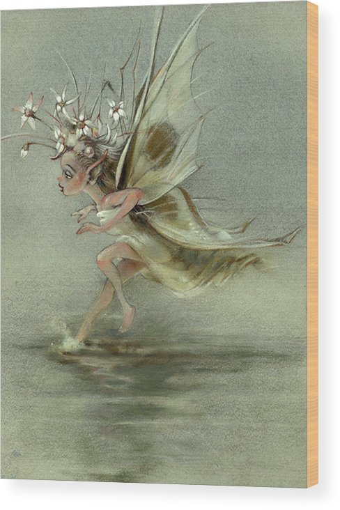 Fantasy Wood Print featuring the painting Skimmer by Patrick McClintock