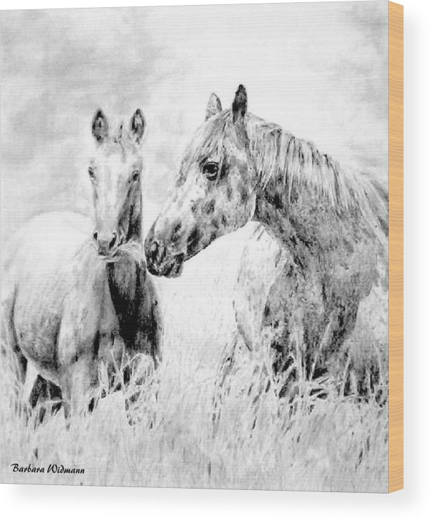 Horses Wood Print featuring the drawing Grazing by Barbara Widmann