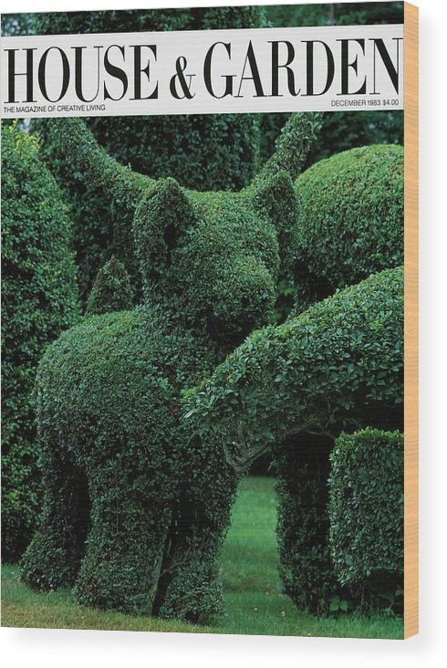 Animal Wood Print featuring the photograph A Topiary Bear In Alice Braytons Green Animals by Horst P. Horst