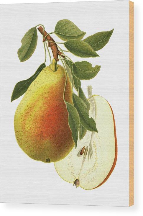Art Wood Print featuring the digital art Pear by Ivan-96