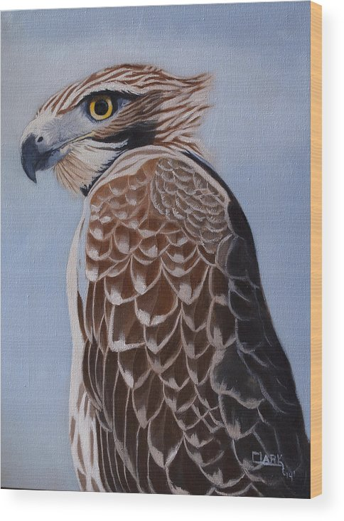 Oil Painting Wood Print featuring the painting Redtail portrait by Wade Clark
