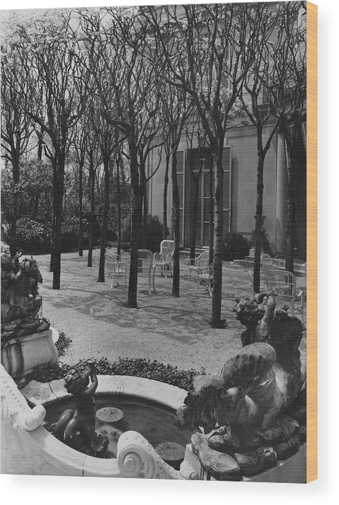 Exterior Wood Print featuring the photograph The Garden Of A Home In Meridian Hill by Carola Rust