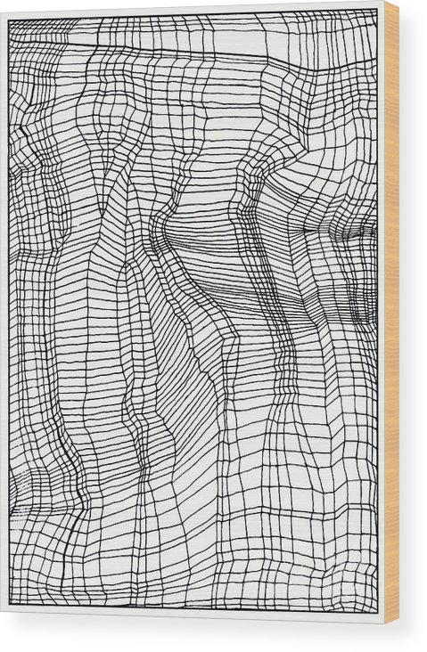Contours Wood Print featuring the drawing Contours by Andy Mercer