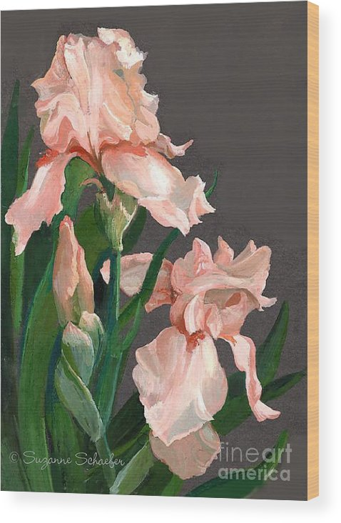 Flowers Wood Print featuring the painting Iris Study by Suzanne Schaefer