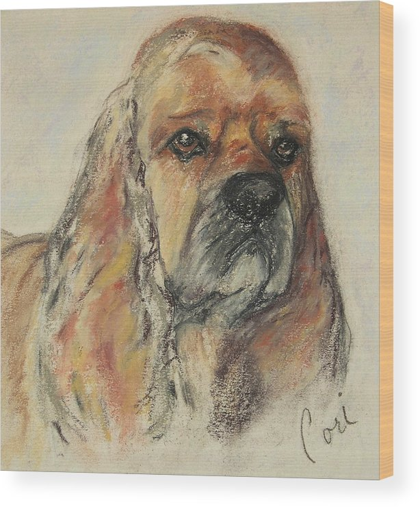 Dog Wood Print featuring the drawing Serious Intent by Cori Solomon