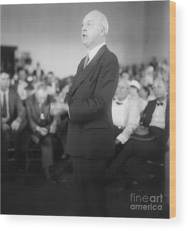 People Wood Print featuring the photograph Dudley Field Malone Delivering Speech by Bettmann