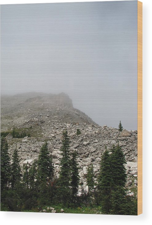 Scapegoat Massif Wood Print featuring the photograph Above Scapegoat Camp Fog by Pam Little
