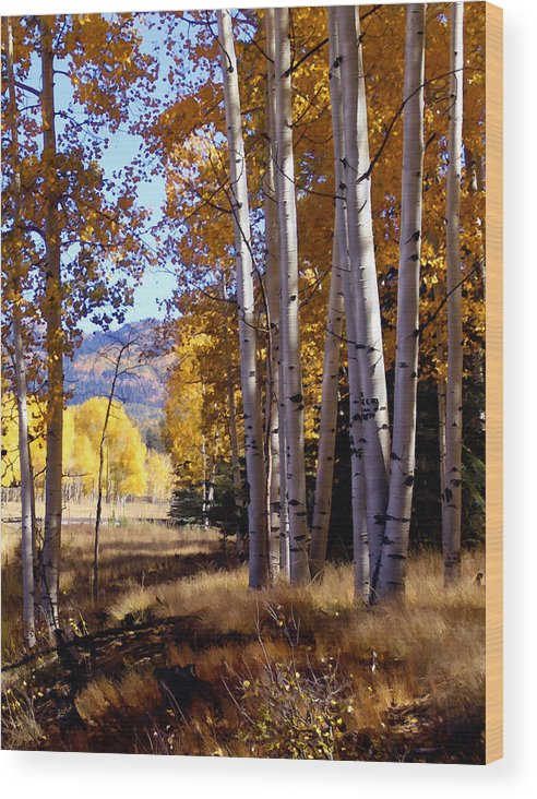 Trees Wood Print featuring the photograph Autumn Paint Chama New Mexico by Kurt Van Wagner