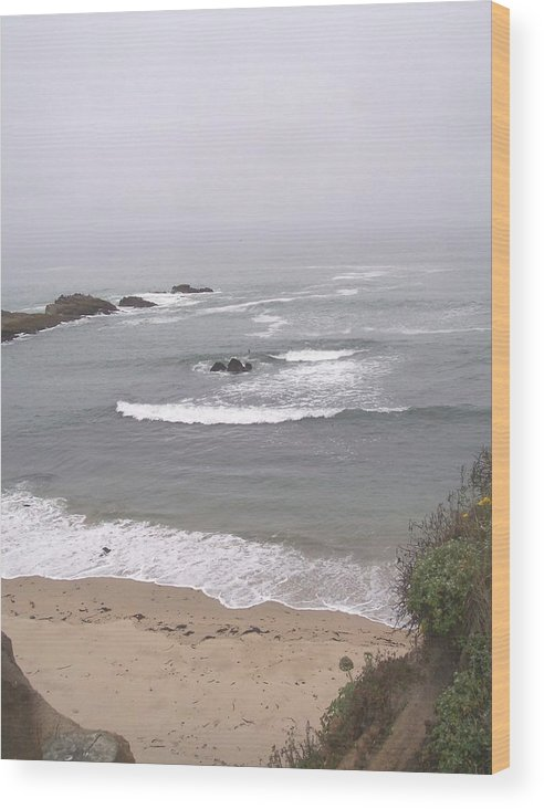 Coast Wood Print featuring the photograph Coastal Scene 2 by Pharris Art