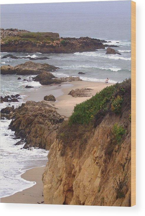 Coast Wood Print featuring the photograph Coastal Scene 8 by Pharris Art