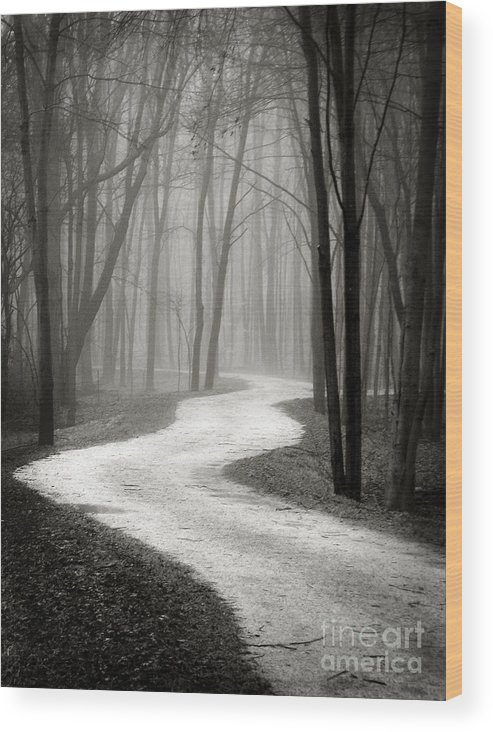 Ohio Wood Print featuring the photograph Curves by Robert Gardner