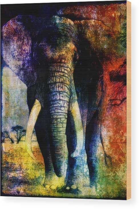 Animals Wood Print featuring the mixed media Elephant by Wendie Busig-Kohn