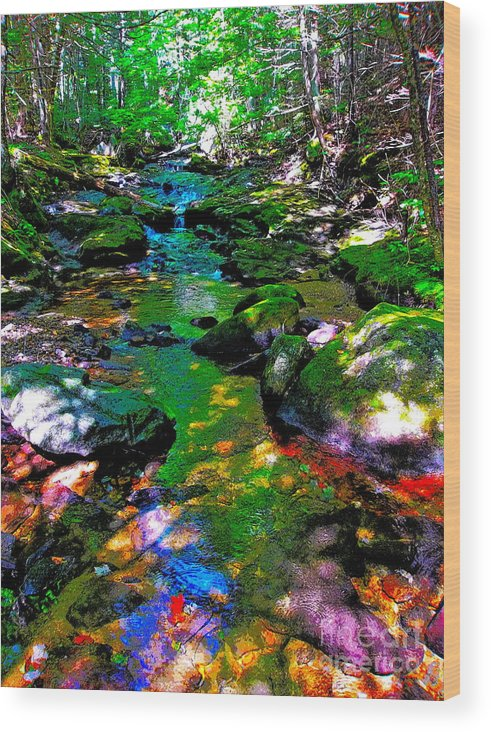 Landscape Wood Print featuring the photograph Hcbyb 276 by George Ramos