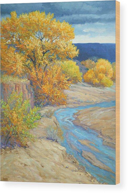 Jemez Wood Print featuring the painting Jemez Arroyo by Douglas Turner