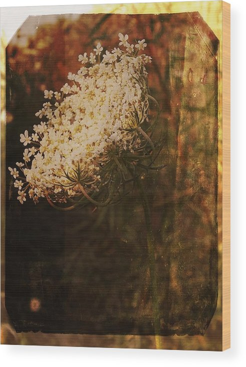 Wood Print featuring the photograph Mother Nature's Lace by Sherry Lasken